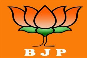 Bharatiya Janata Party logo - Google Images
