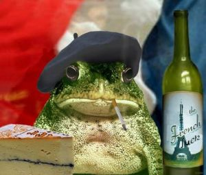 A disgruntled Frenchman - Google Images