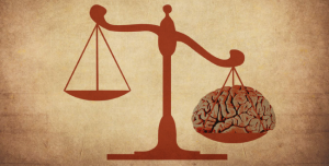 neurolaw_web